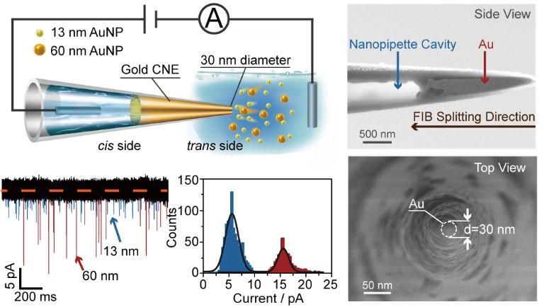 纳米孔道电化学空间限域效应助力纳米电极瞬态测量