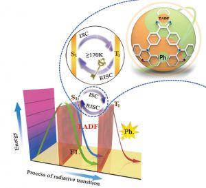 Advanced Optical Materials:探索激子的发光之旅——一种同时具有热致延迟荧光和室温磷光的纯有机小分子