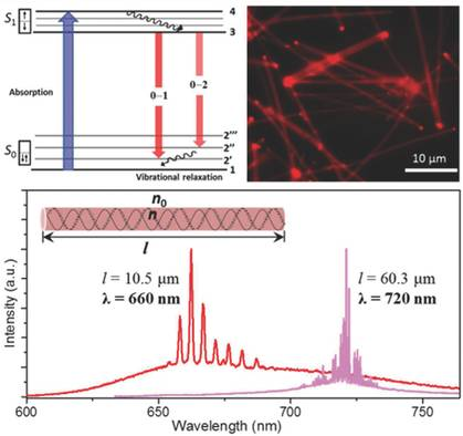 Advanced Functional Materials: 可谐调近红外有机纳米线激光器