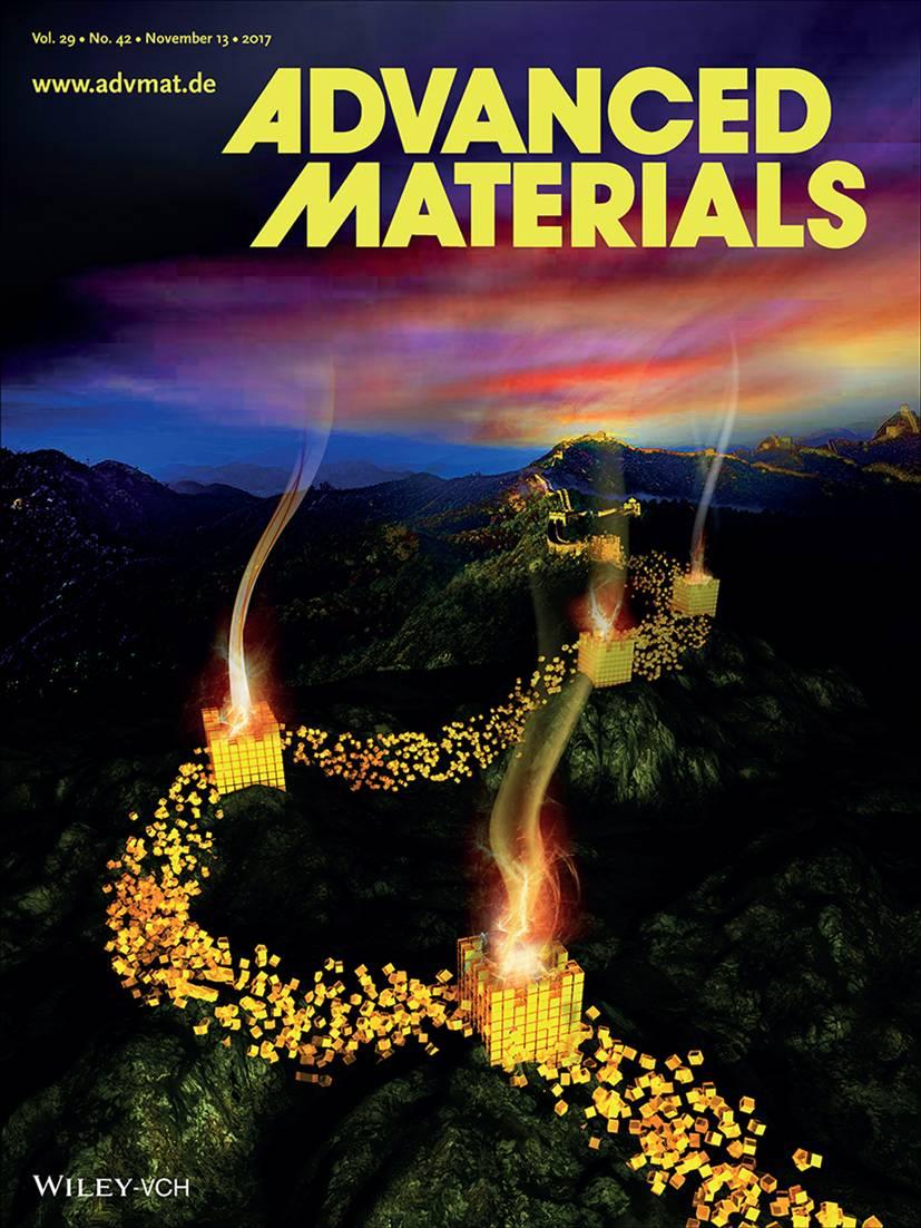 Advanced Materials:光操控软晶体指向的有序性、微域化及图案化