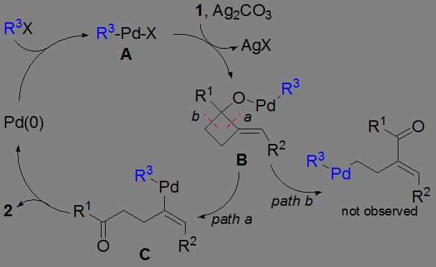 基于碳-碳键断裂的钯催化交叉偶联反应: 从2-亚烃基环丁醇合成γ,δ-不饱和酮类化合物的研究
