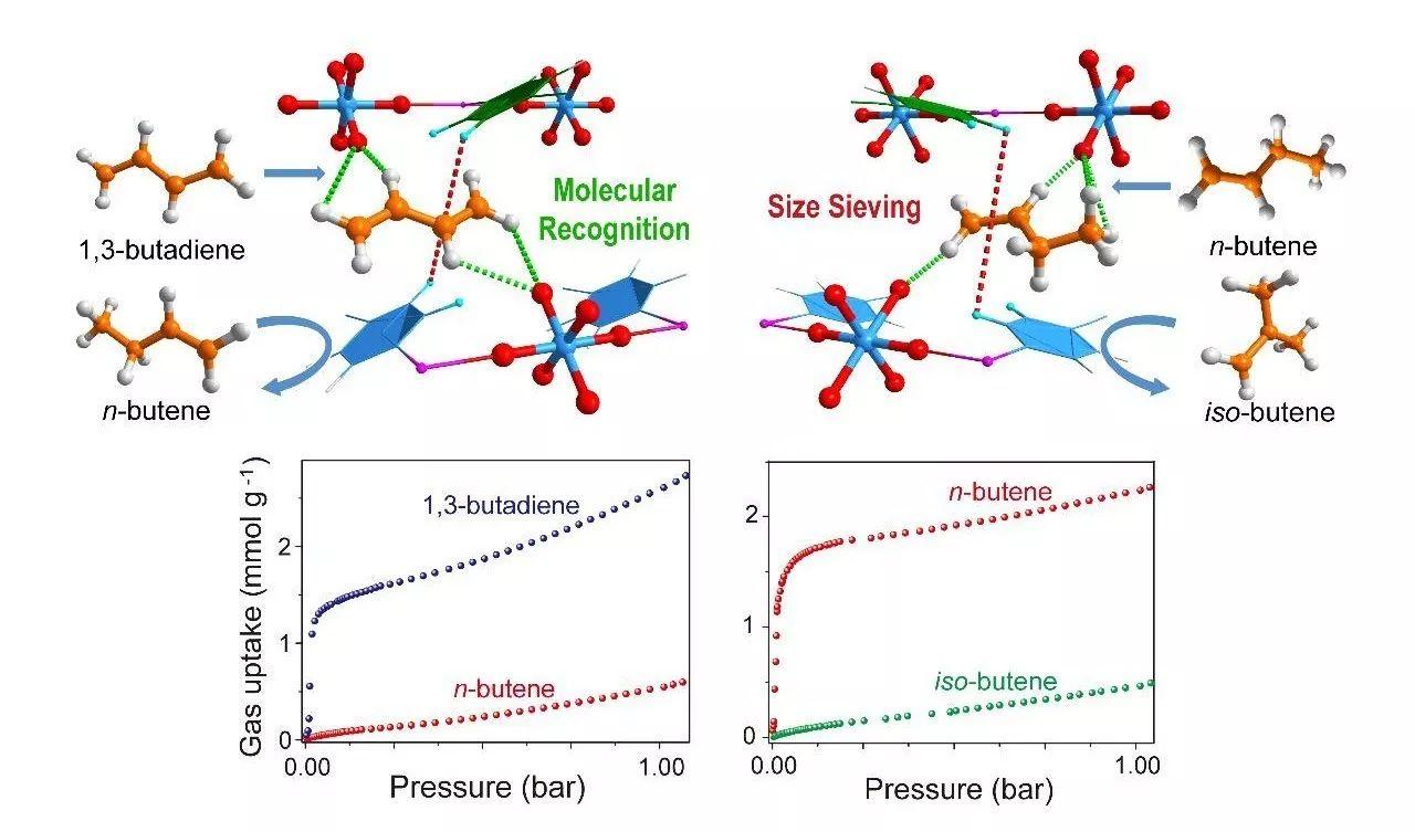 阴离子柱撑超微孔材料实现C4烯烃高效分离