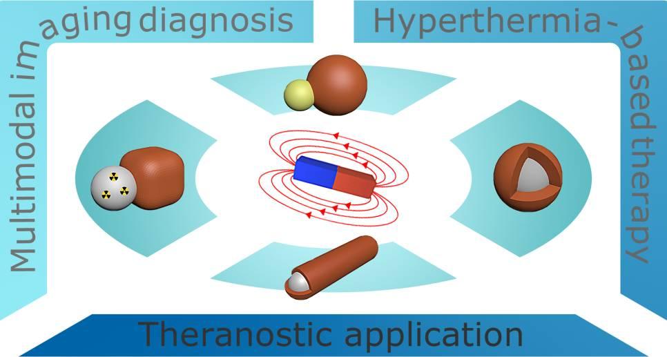 功能性磁性复合纳米材料在生物医学诊断与治疗中的应用