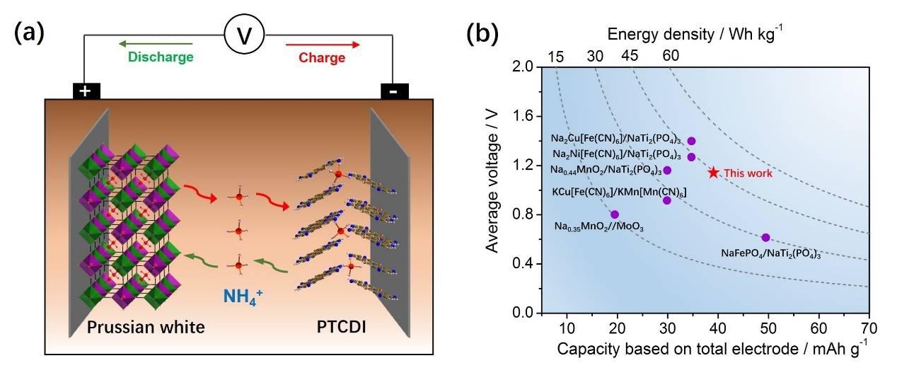 """""""摇椅型""""铵离子电池:一种新型储能电池的尝试"""
