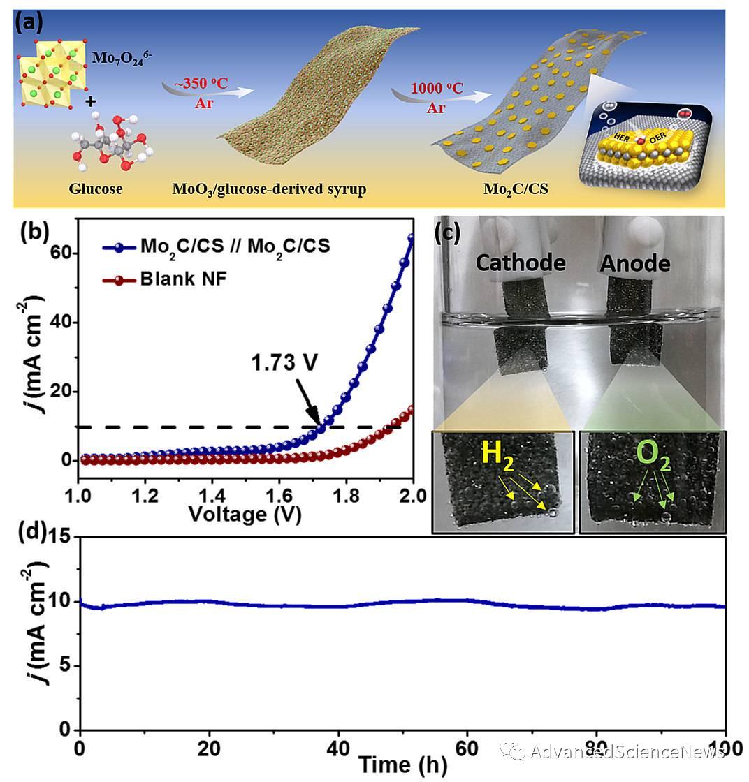 基于碳化钼的高效双功能催化剂用于电解水制氢