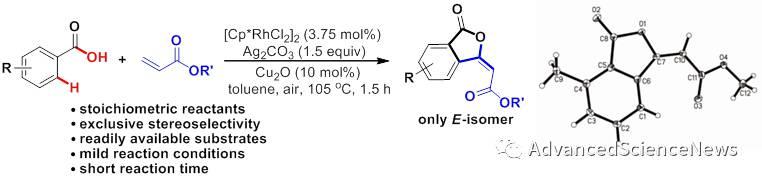 立体选择性高效构建(E)-3-烯基苯酞骨架