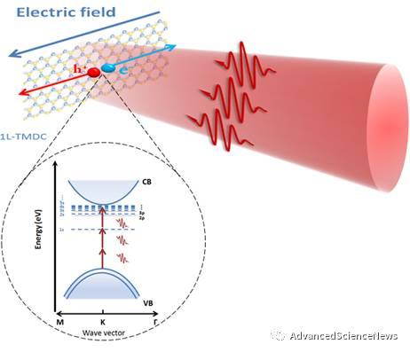 二维半导体多光子效应: 全新物理机制以及应用
