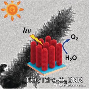 提高光生载流子的利用效率:利用TiO2夹层修饰分枝结构Fe2O3