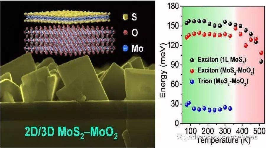2D二硫化钼/3D二氧化钼混合维度范德华异质结构的一步法制备及新奇光电特性
