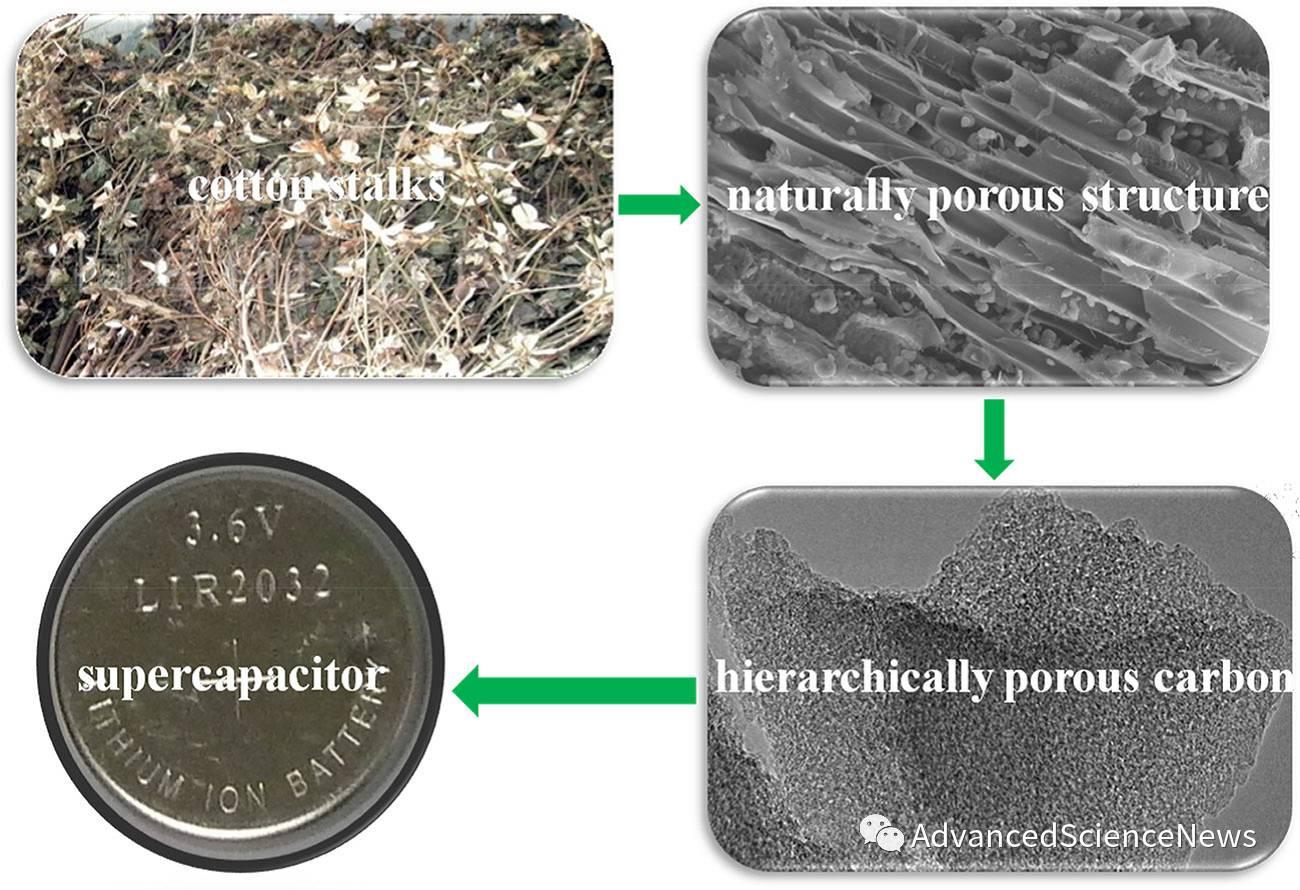 棉杆基分级孔炭材料用于超级电容器