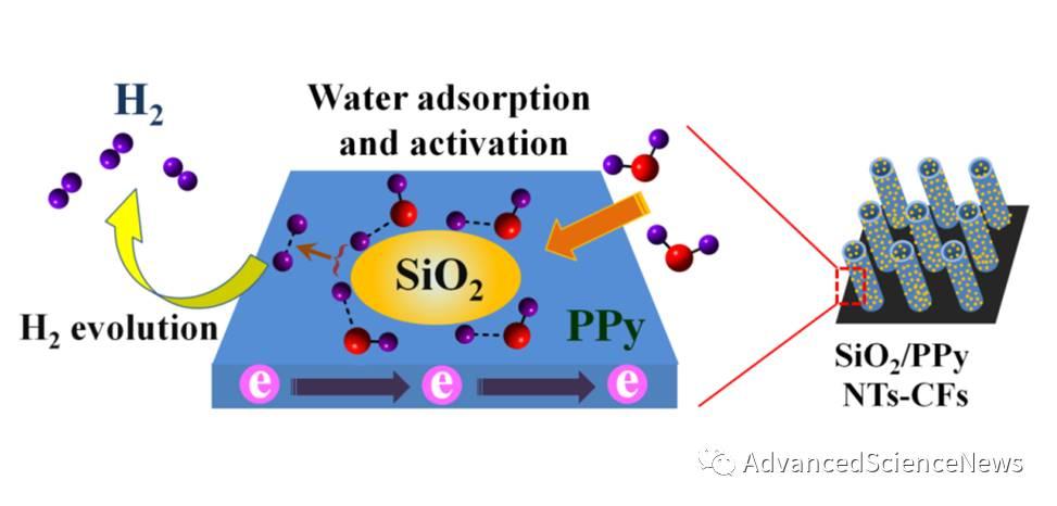 Angewandte Chemie:非金属氧化物/导电高分子复合中性体系电解水析氢催化剂