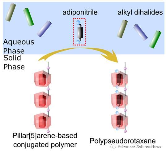 柱[5]芳烃-吡咯并吡咯二酮共轭聚合物的合成及其与己二腈的主客体性能研究