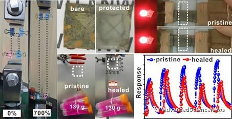 具有高度可拉伸性与低温自修复能力的透明硅橡胶弹性体制备新策略