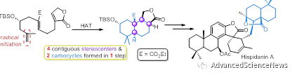 二萜二聚体天然产物Hispidanin A的不对称全合成