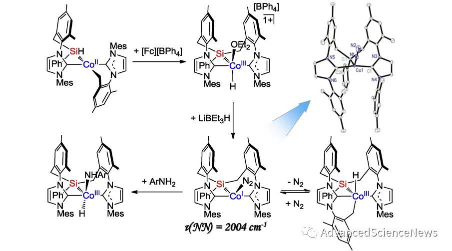 卡宾-硅基-卡宾配体促进一价钴对惰性键的活化