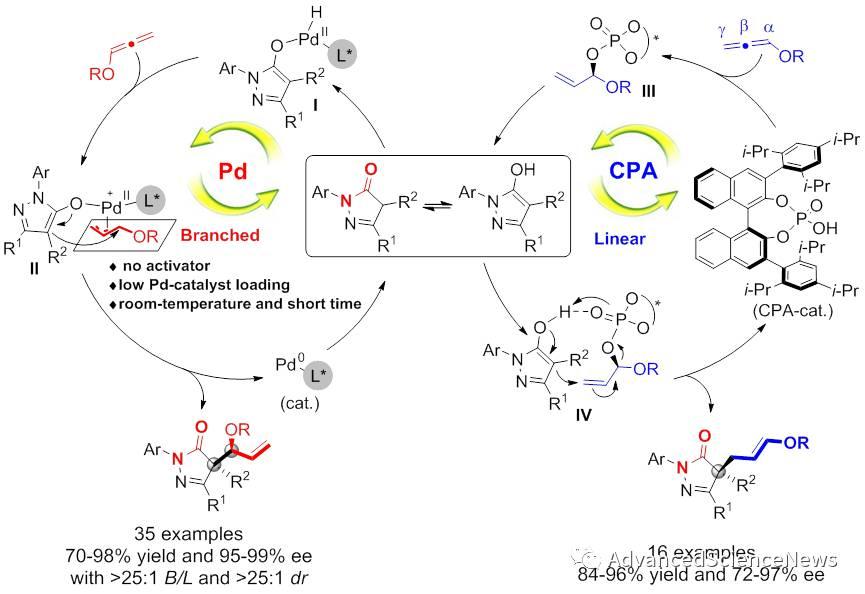 高区域高立体选择性联烯醚对吡唑酮的加成反应