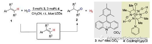 无氧化剂体系的光催化烯烃与醇或氮唑的脱氢交叉偶联反应