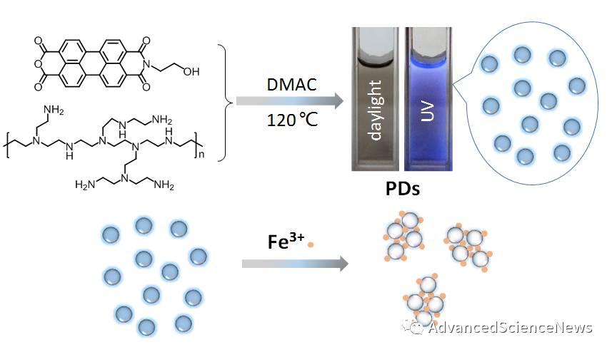 新型苝酰亚胺功能化聚乙烯亚胺聚合物点的制备及其在金属离子检测方面中的应用