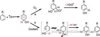 芳烃的羟基化机理