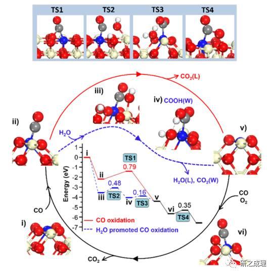 路军岭ACS Catalysis: H2O直接参与CO氧化反应?