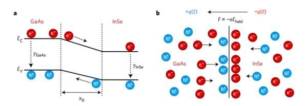 半导体表面飞秒级的电子激发过程观测