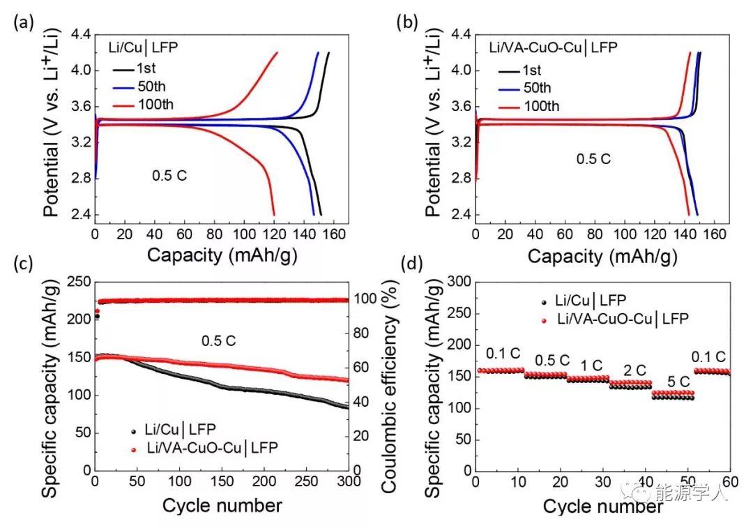 亲锂氧化铜纳米片阵列实现稳定的锂金属沉积