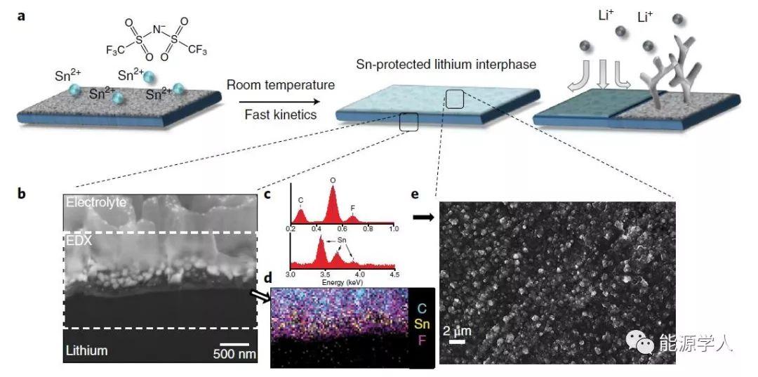 Nature Energy:人造活性物SEI膜高效抑制金属枝晶生成