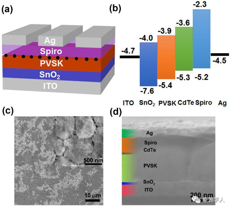 CdTe量子点表面配体对钙钛矿电池效率及迟滞的影响