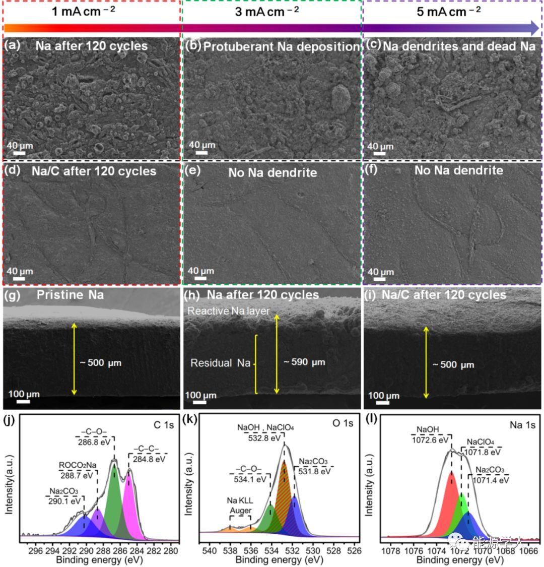 北京科技大学范丽珍Adv. Energy Mater.: 三维柔性碳毡/金属钠无枝晶负极