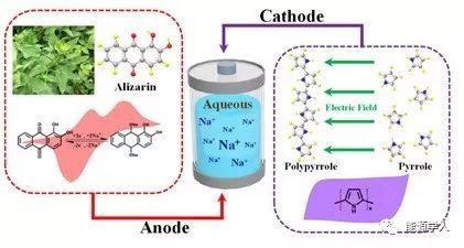 基于生物分子一维自组装结构的水系钠离子电池