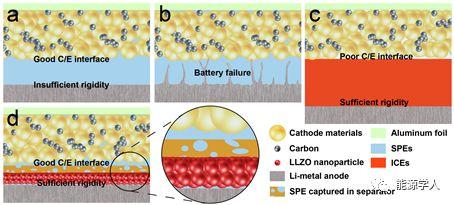 具有非对称功能化层的固态电解质提升金属锂电池性能