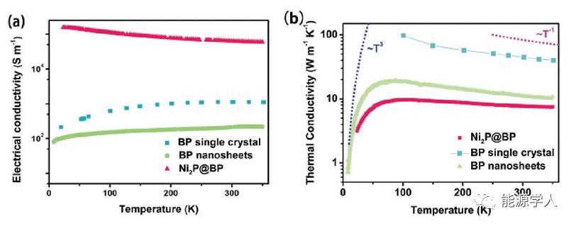 多功能的0D-2D Ni2P纳米晶体/黑磷复合材料