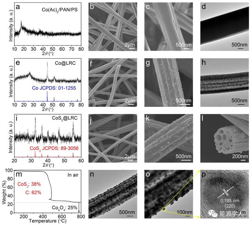 楼雄文教授:CoS2修饰的多通道碳纤维装载SeS2的储锂性能研究