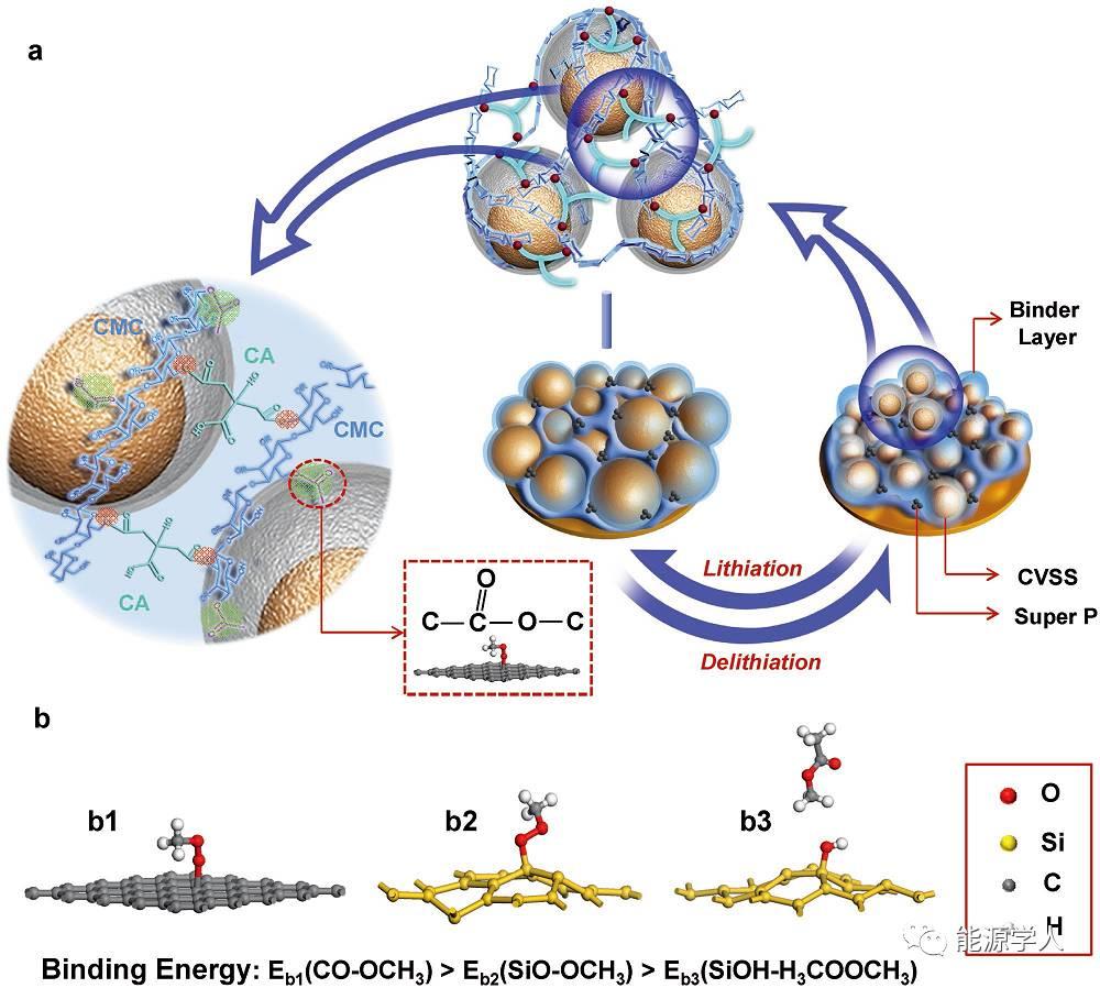 双壳-核结构且与粘接剂键合——提升Si负极性能