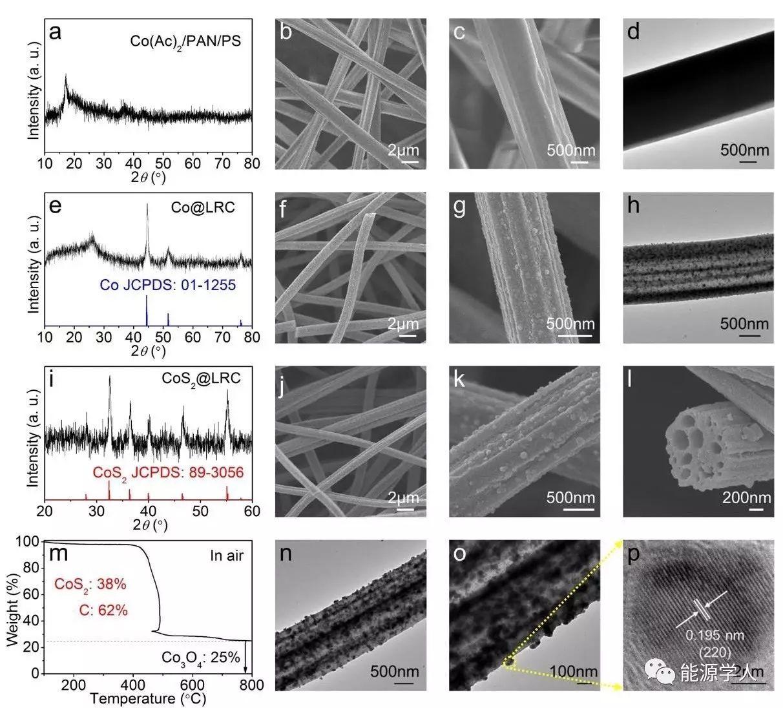 CoS2-莲藕状碳负载SeS2用于高性能锂硫正极