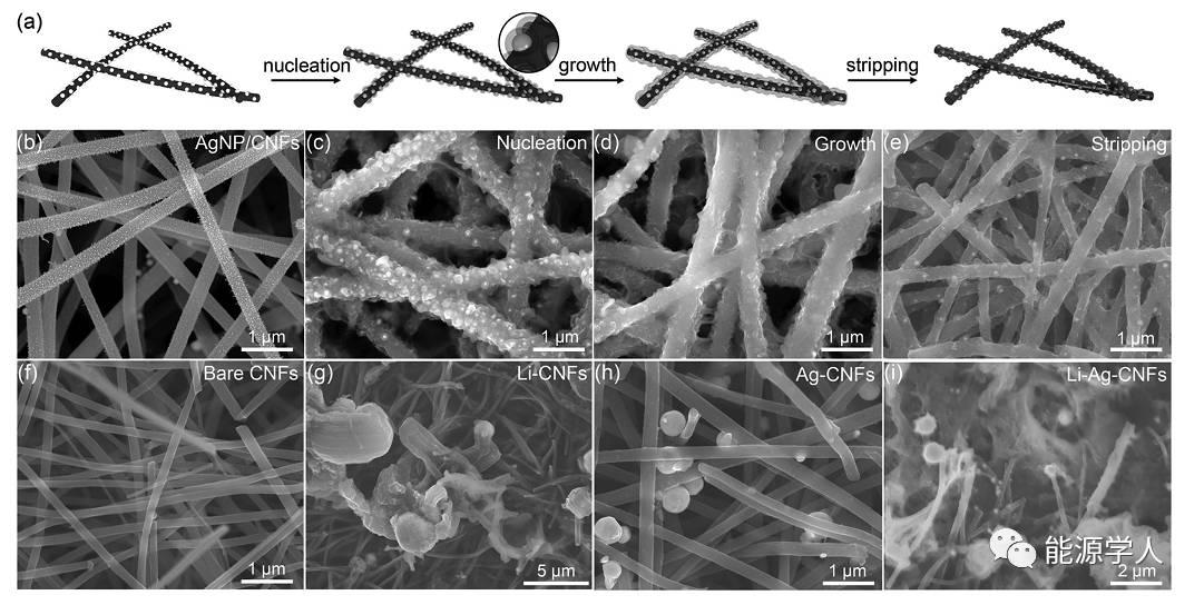 超细银纳米颗粒作为锂金属负极沉积晶种