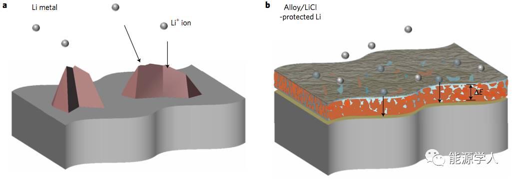 一种高效的稳定锂金属负极的表面修饰手段
