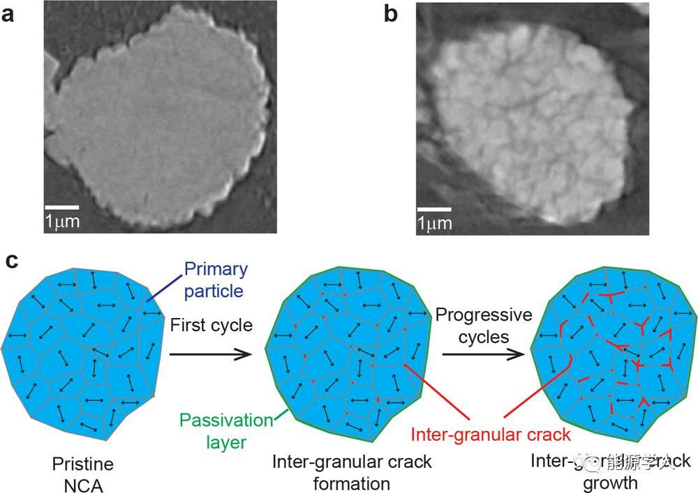 原位XRD探知层状正极材料容量衰减的主要原因:化学分解or物理破裂