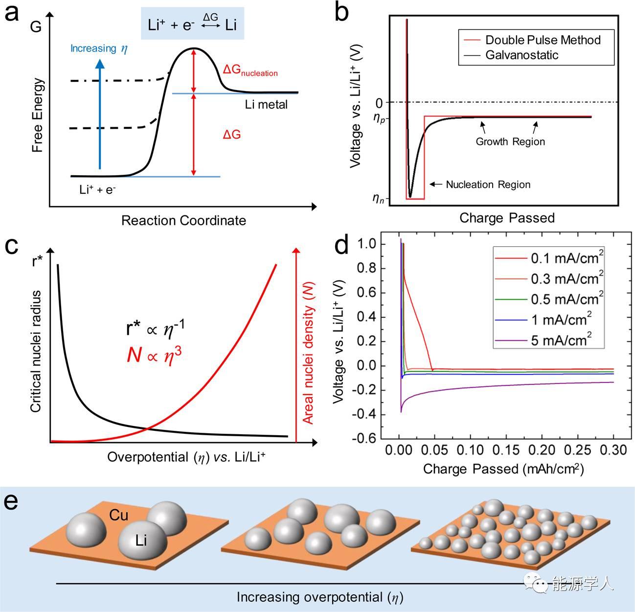 Li金属负极反应过程中的成核及生长行为