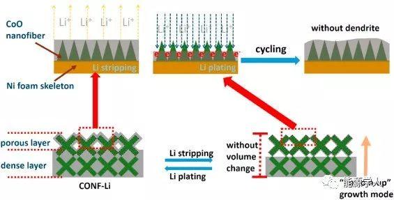 复旦大学周永宁Energy Storage Materials:CoO纳米纤维装饰泡沫镍作为可抑制锂枝晶的高能锂金属电池宿主骨架