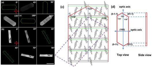 Angew Chem:通过控制微晶中的分子取向来实现光机械诱导的磁场响应
