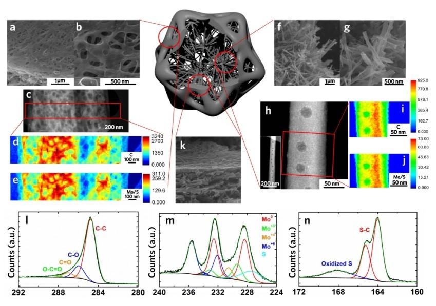 """MOF碳化变形记——基于主客体系的碳基纳米""""硅藻"""""""