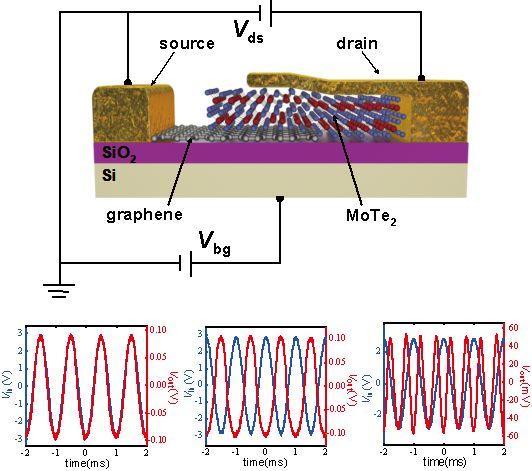 Advanced Electronic Materials:二维材料范德华异质结构实现高性能模拟信号调制