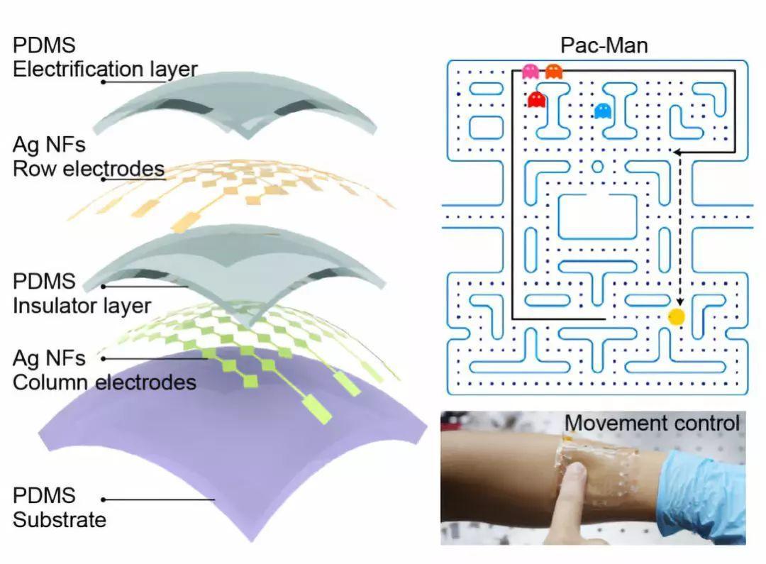 Advanced Materials:自驱动透明可拉伸触觉传感器阵列