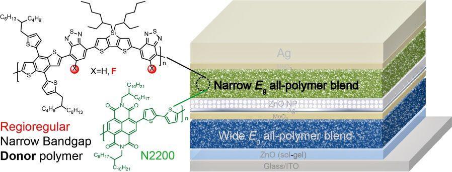 Advanced Energy Materials:全聚合物叠层太阳能电池