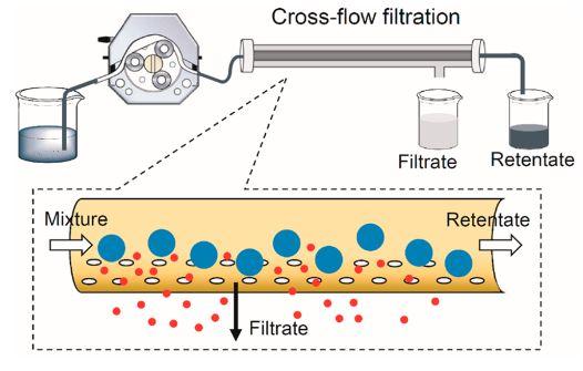夏幼南和他的微滴反应器:实现贵金属纳米晶的自动化与规模化生产