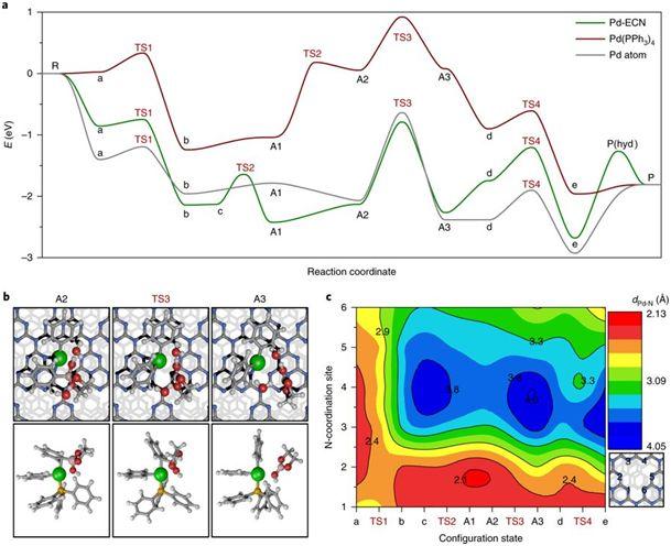 氮化碳力挺的单原子将Suzuki反应推向新高度