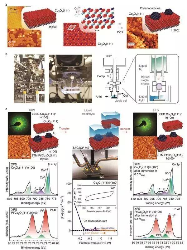 """Nat. Mater.:""""电化""""模型催化剂探索电解质中的电催化反应"""