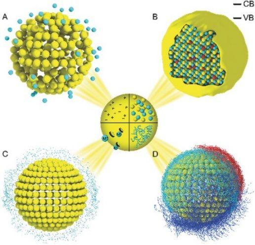 Advanced Materials:纳米材料安全性设计——纳米科技可持续发展的新思路