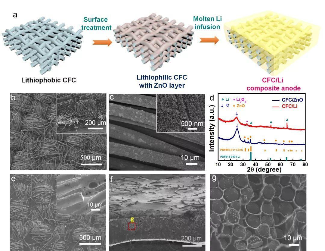 Small Methods:植入碳纤维的稻草砖结构复合锂金属负极